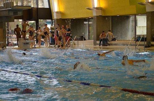 Schwimmkurse starten im  Herbst