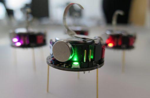 Was Roboter von Ameisen lernen