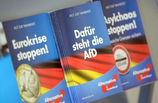 AfD-Extreme auf dem Weg nach Berlin