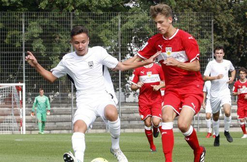 Liveticker: VfB-Junioren wollen zurück an die Tabellenspitze