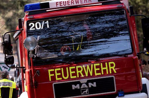 Feuerwehr befreit Disco-Besucher aus Dornenhecke