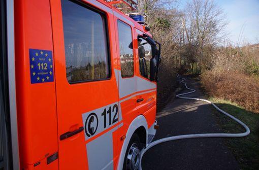 Frau rettet Hund aus brennendem BMW