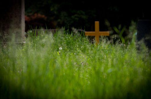 Zwei Kinder schänden 52 Gräber