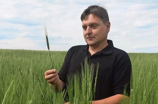 Bauer Hecker auf seinem Einkorn-Feld: Er kommt ganz ohne Spritzmittel aus Foto: Rosenberger