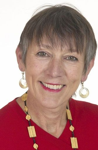 Keiner der 87 Abgeordneten aus Baden-Württemberg stellt so viele kleine Anfragen wie Annette Groth. Die Politikerin sitzt seit acht Jahren für die Linke im Bundestag und hat bis zum 1. Juli 900 kleine Anfragen gestellt.  Foto: Deutscher Bundestag