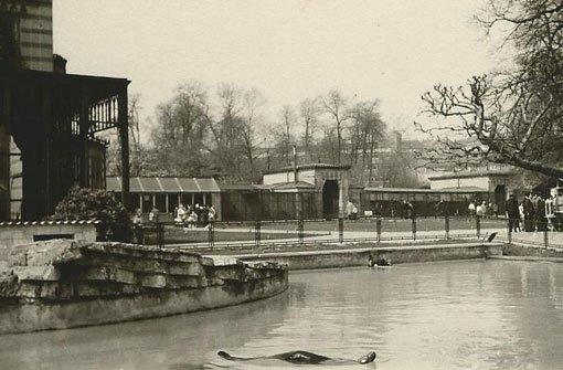 Anfang der 1960er Jahre ist diese Aufnahme des Seelöwenbeckens entstanden. Roland Dieterich aus Stuttgart hat damals auf den Auslöser gedrückt. Foto: Roland Dieterich