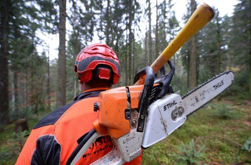 Ein Waldarbeiter ist in Schorndorf von Baumstämmen überrollt und schwer verletzt worden (Symbolbild). Foto: dpa