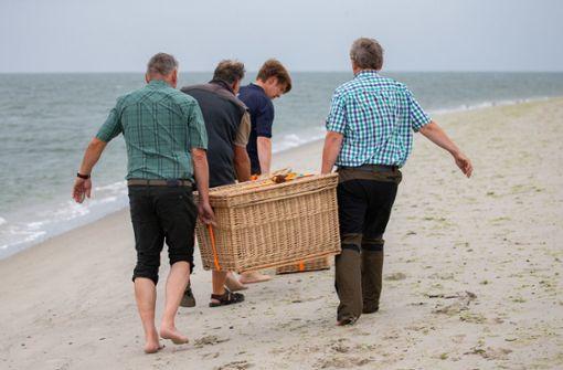 Mitarbeiter der Seehundstation Norddeich bringen die Körbe mit jungen Seehunden zur Auswilderung an den Strand der Nordseeinsel Juist. Foto: dpa