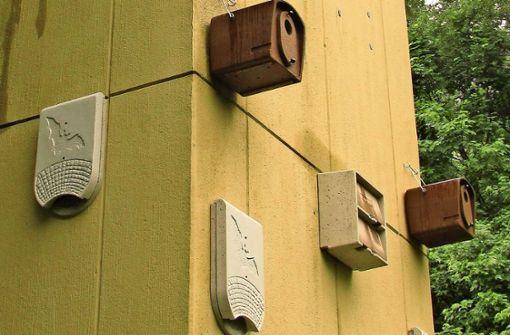 Vier verschiedene Nistkastenarten hängen jetzt am Trafoturm Foto: Gabriel Bock