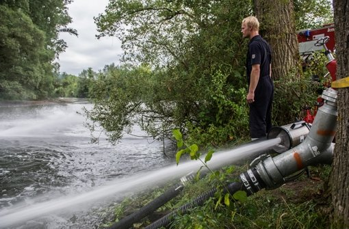 Gewässer ist ökologisch nicht  tot