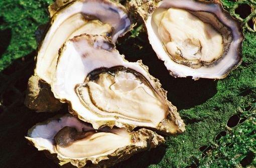 """Das Bundesamt für Verbraucherschutz warnt vor holländischen Austern, die mit Noroviren infiziert sind. Die Marke """"Umami Auster"""" von Bonton Products sei von der Fidi Pus GmbH in Kehl importiert und vor allem im Großraum Stuttgart verkauft worden (Symbolbild). Foto: AP"""