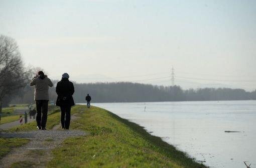 Spaziergänger laufen am 24.12.2012 in Karlsruhe auf einem Hochwasserdamm am Rhein. Foto: dpa