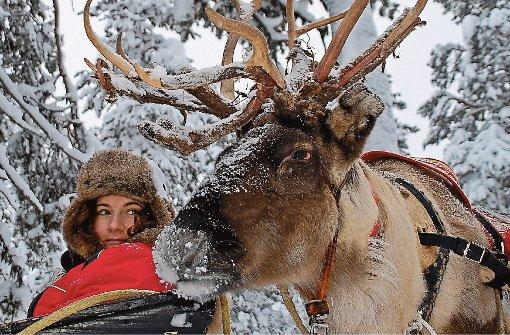 Lappland: Arktisches Abenteuer