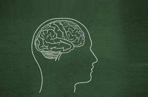 Das Hirn - viel erforscht und doch in vielem unergründlich Foto: dreamer82/Fotolia