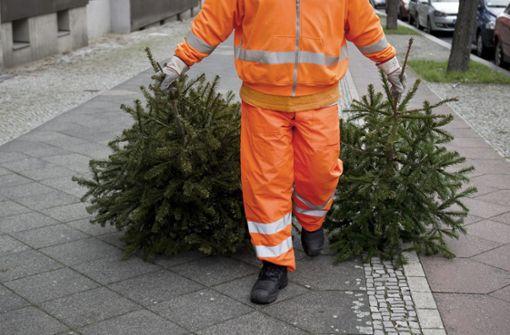 So entsorgen Sie Ihren Weihnachtsbaum
