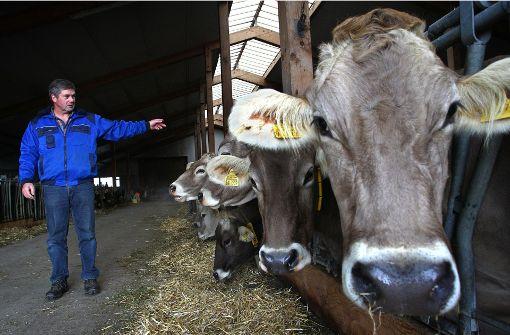 Regierung will keine höhere Fleischsteuer