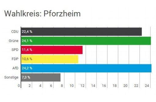 Die AfD ist in Pforzheim die stärkste Partei. Foto: Screenshot
