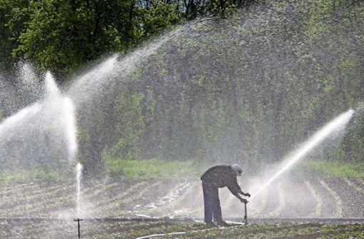 Trinkwasser wichtiger als Beregnung