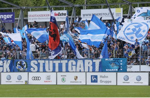 Lieber gegen den VfB, als gegen die Kickers