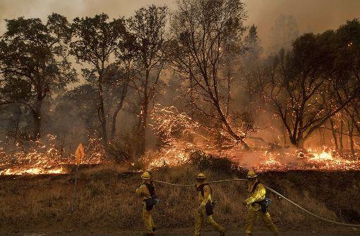 Schwere Waldbrände in Kalifornien und Kanada