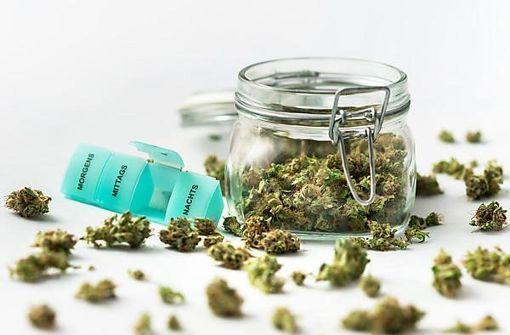 """""""Die Schmerzen lassen durch Cannabis nach"""""""