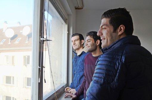 Blick nach vorn: Abdul, Hassan und Sahel (von links) schauen aus dem Fenster ihrer neuen Wohnung in Zuffenhausen Foto: Hanna Spanhel