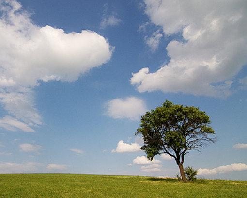 Der Donnerstag bringt einen Mix aus Sonne und Wolken. Mehr zum Wetter lesen Sie hier. Foto: Leserfoto: ricochet
