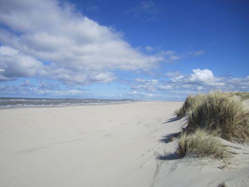 Traumstrände an der Nordsee: wo der strahlend blaue Himmel in das fast gleichfarbige Meer übergeht  Foto: Die Nordsee GmbH