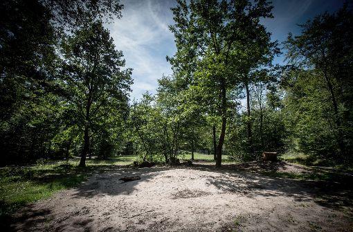 Überreste aus vergangenen Zeiten – Der Spielplatz am Bettelweg ist aus Sicherheitsgründen ersatzlos gestrichen worden. Foto: Lichtgut/Achim Zweygarth