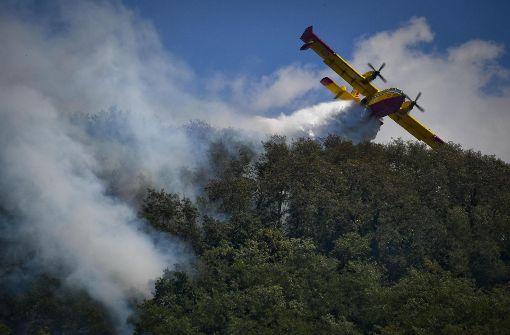 Der Waldbrand-Krimi
