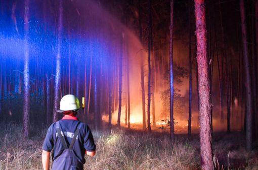 Ein Feuer hat sich im Südwesten Brandenburgs auf einer großen Waldfläche ausgebreitet. Foto: dpa-Zentralbild