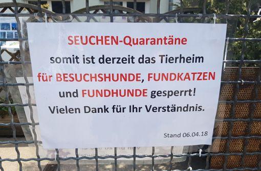 Kraftakt für Stuttgarter Tierheim