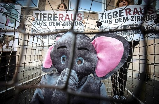 Proteste gegen Wildtiere im Zirkus