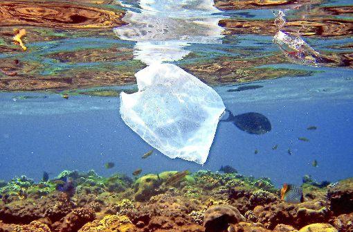Nach uns die Plastik-Sintflut