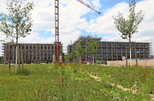 Die ersten beiden Gebäude im neuen Wohn- und Gewerbequartier Neckarpark werden noch in diesem Jahr fertig. Foto: Uli Nagel