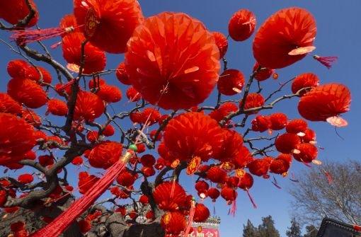 Das Jahr der Schlange: Chinesisches Neujahr: Ein Fest der Farben ...
