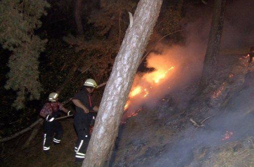 Zehntausende Quadratmeter Wald abgebrannt