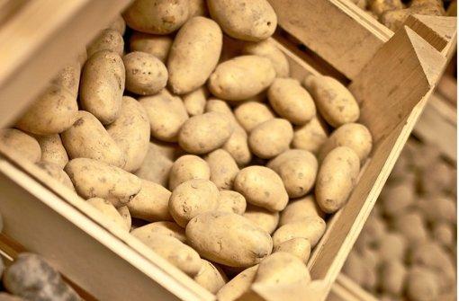 Mit Annabelle zum guten Kartoffelsalat