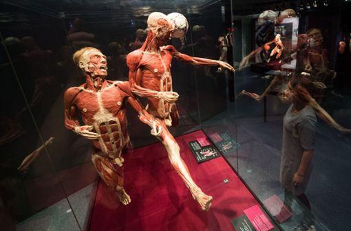 Museum zählt 45.000 Ausstellungsbesucher