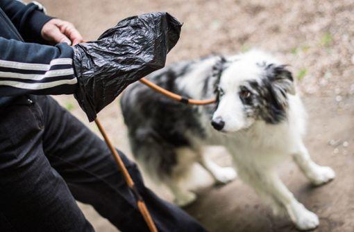 Polizeieinsatz nach Hundekot im Briefkasten