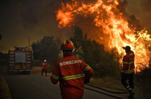 3000 Feuerwehrleute kämpfen gegen das Feuer