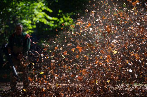 Herbstlicher Start in den Oktober