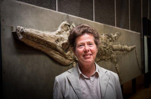 Kiwi und Co. erinnern an 225 Jahre Naturkundemuseum