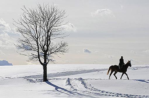 Viel Schnee, kaum Salz und schulfrei