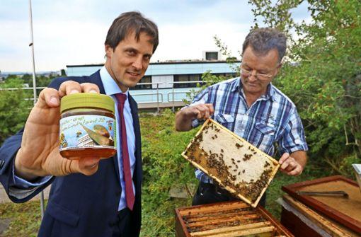 Bienen sind gefragte Helferlein