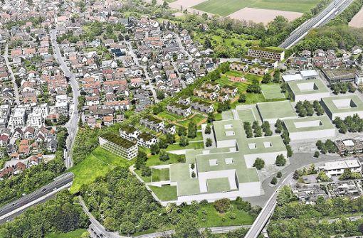 Der Deckel über der A81 soll eine Schnittstelle zwischen dem Ortsteil Geisingen (links der Autobahn) und dem neuen Zentrum mit dem Neubau der Oscar-Paret-Schule werden. Foto: Stadt Freiberg