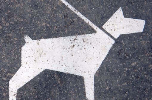 Hundebesitzerin attackiert Radfahrer