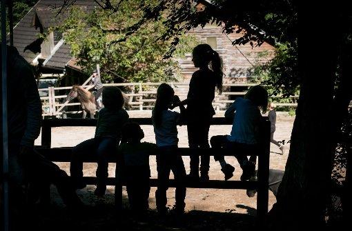 Auf der Farm sind Kinder mit Defizit mittendrin