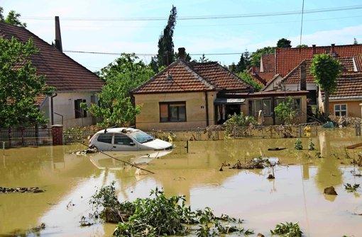 Eine Leonbergerin sammelt für die Flutopfer