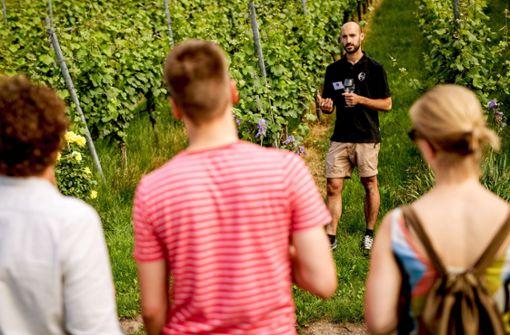 Das Thema Weinanbau erreicht auch junge Menschen